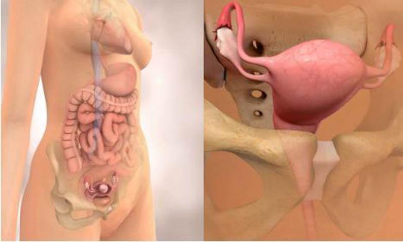 1 неделя беременности: первые признаки post thumbnail image
